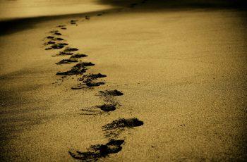 Como usar a Dito para entender a jornada do cliente